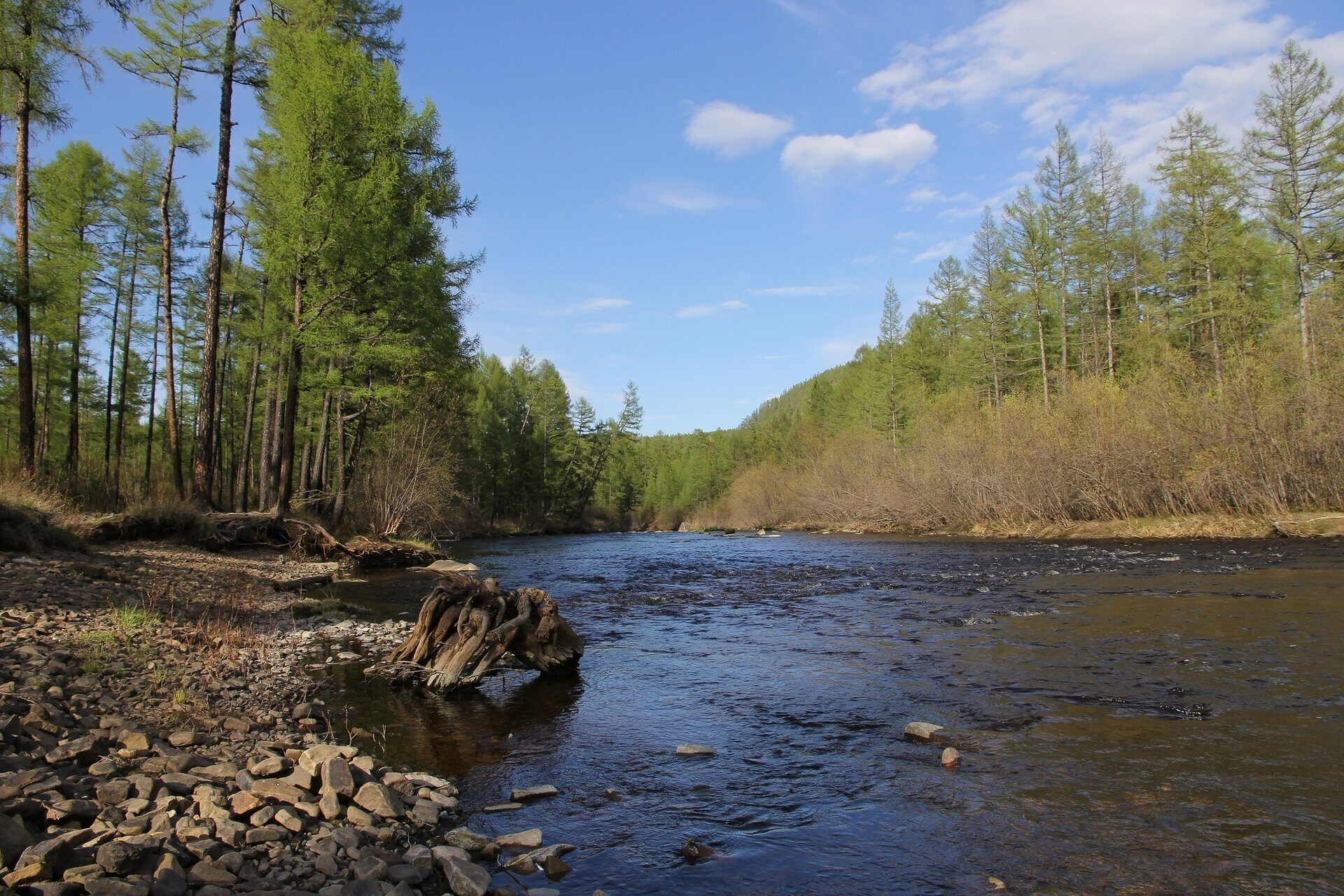 View of the river Berkakit in South Yakutia